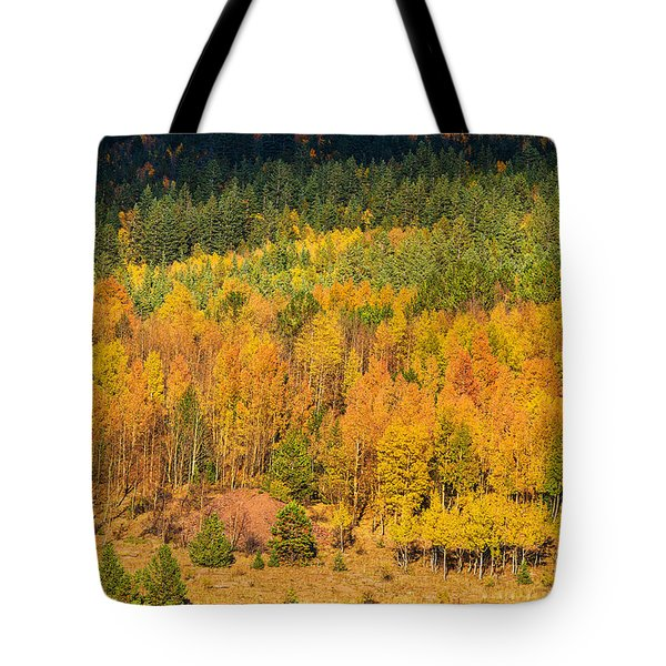 Late Afternoon Gold Tote Bag
