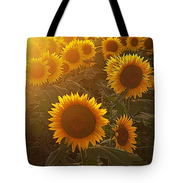 Late Afternoon Golden Glow Tote Bag