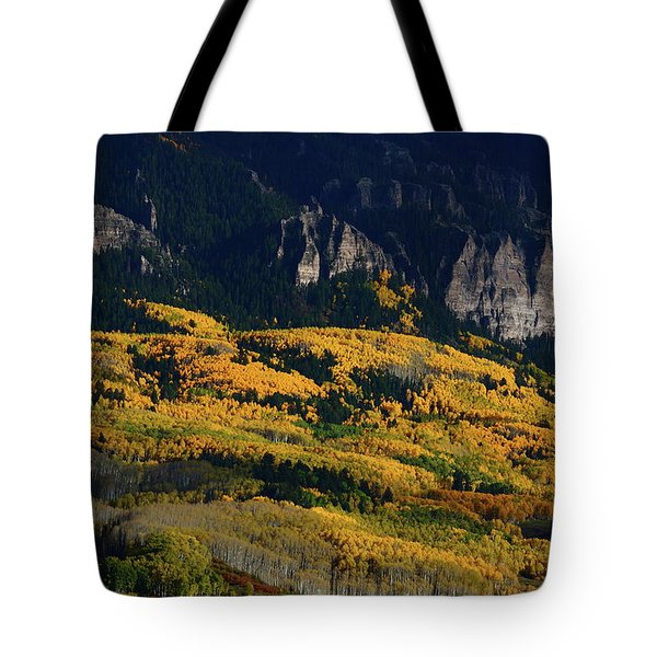 Tote Bag featuring the photograph Late Afternoon Light On Aspen Groves At Silver Jack Colorado by Jetson Nguyen