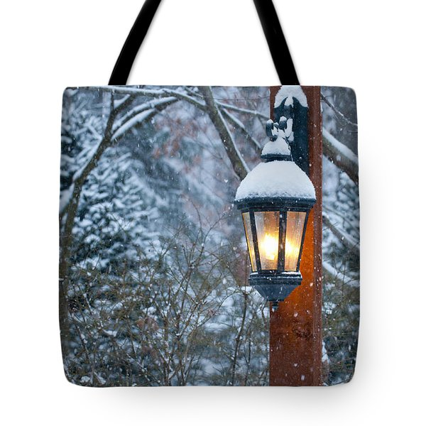 Late Afternoon Snow Tote Bag by Sandra Bronstein