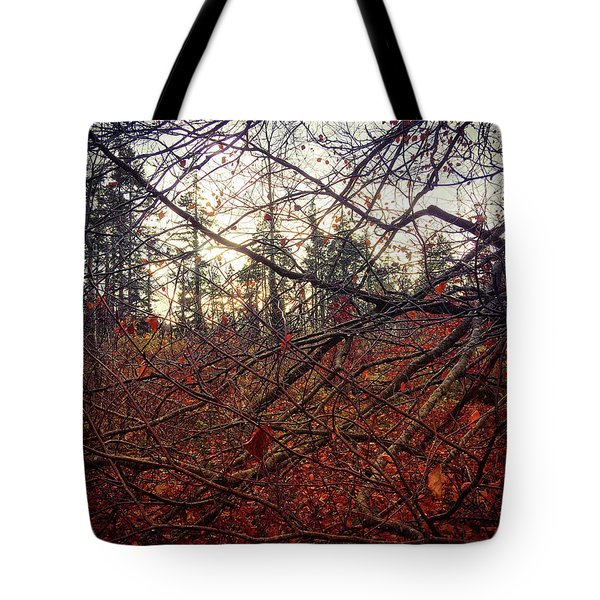 Late Autumn Morning Tote Bag