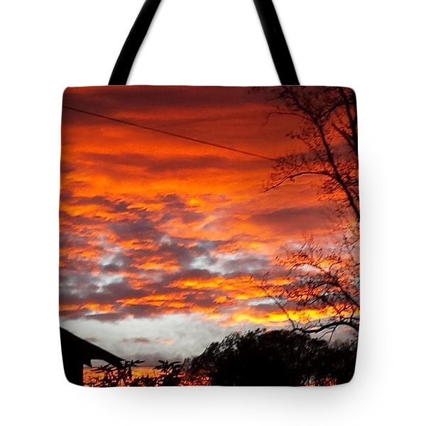 Tote Bag featuring the photograph Late Autumn Sunset by Deb Martin-Webster