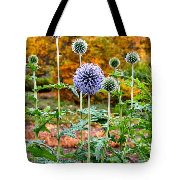 Late Bloom Among Fall Colors Tote Bag