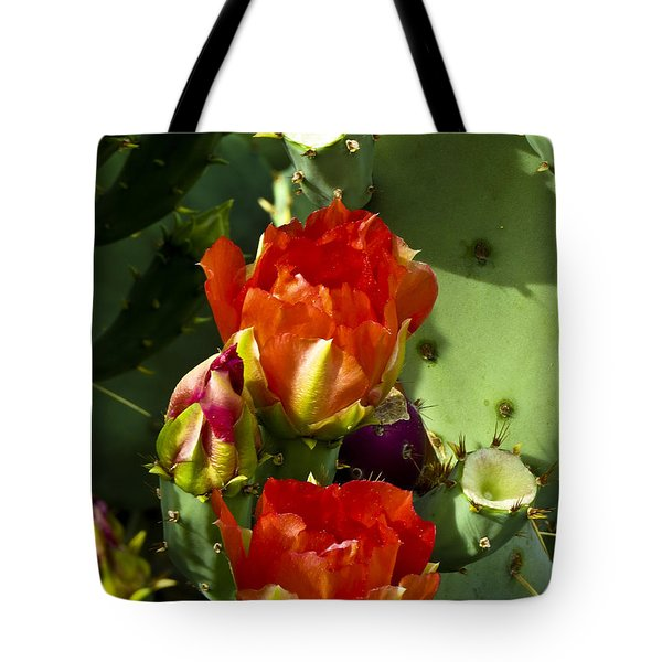 Late Bloomer Tote Bag by Kathy McClure