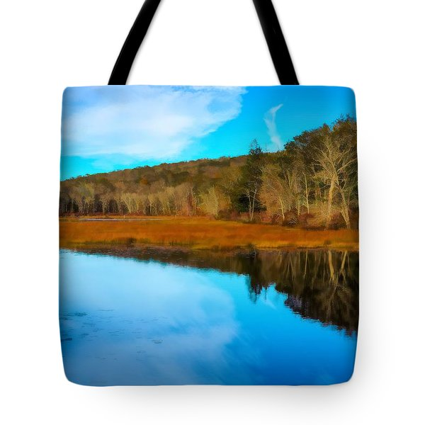 Late Fall At A Connecticut Marsh. Tote Bag