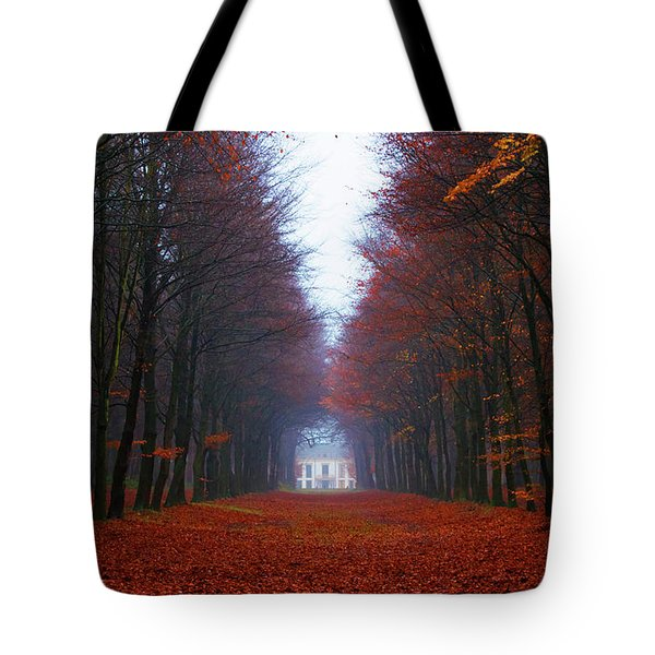 Late Fall Forest Tote Bag