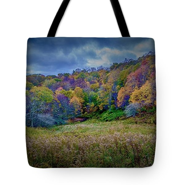 Late Fall On Green Knob Trail Tote Bag