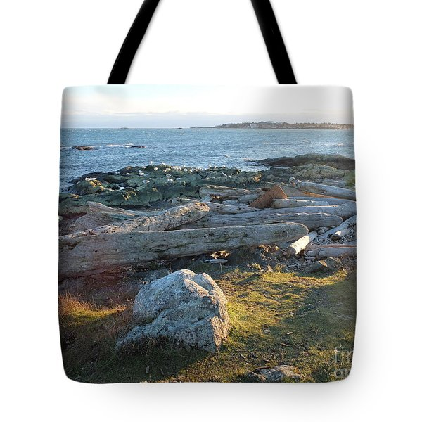 Late In The Day Tote Bag