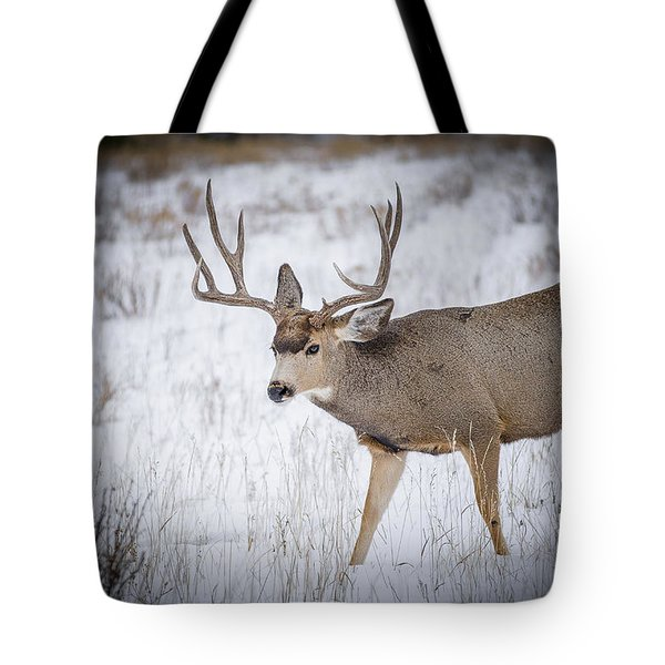 Late Rut Tote Bag