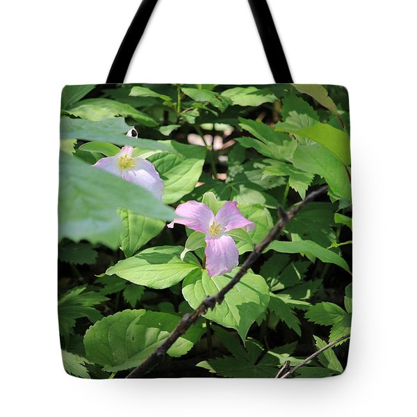 Tote Bag featuring the photograph Late Season Trillium by Rick Morgan