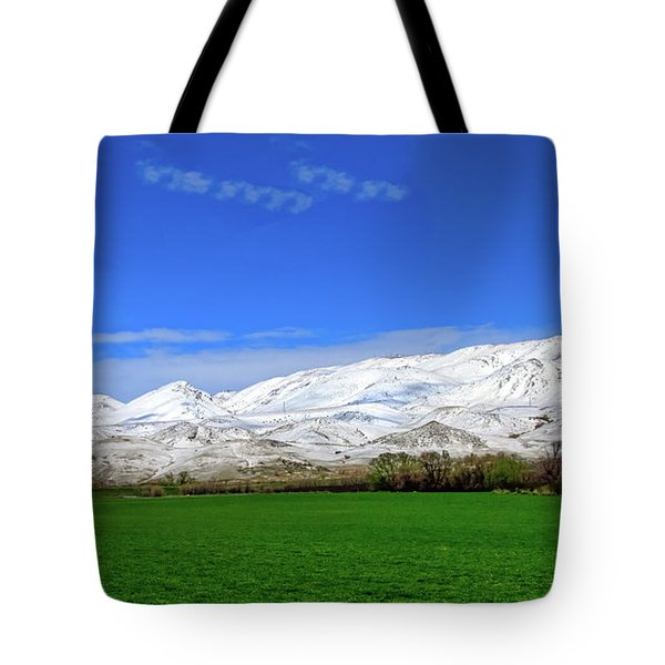 Late Spring View Tote Bag by Robert Bales
