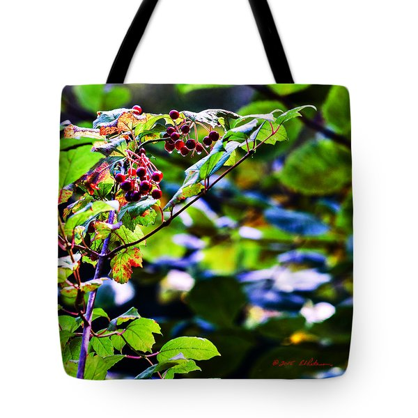 Tote Bag featuring the photograph Late Summer Rain by Edward Peterson