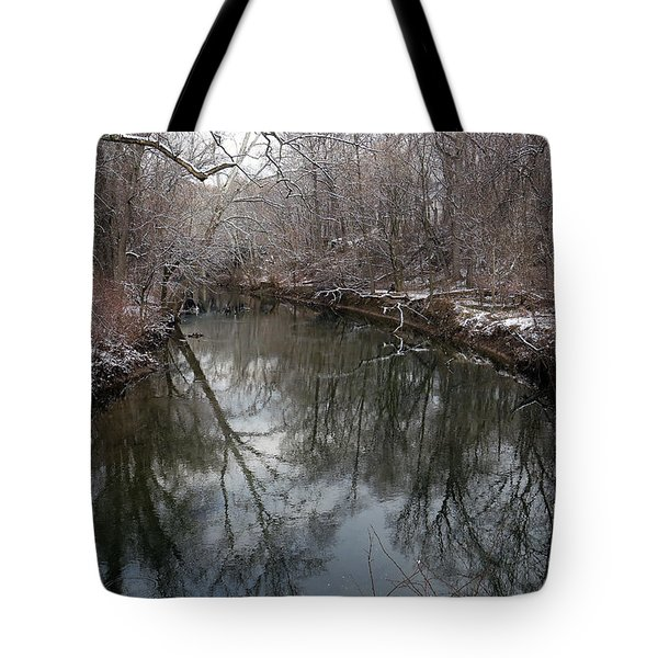 Tote Bag featuring the photograph Late Winter In Philly by Dorin Adrian Berbier