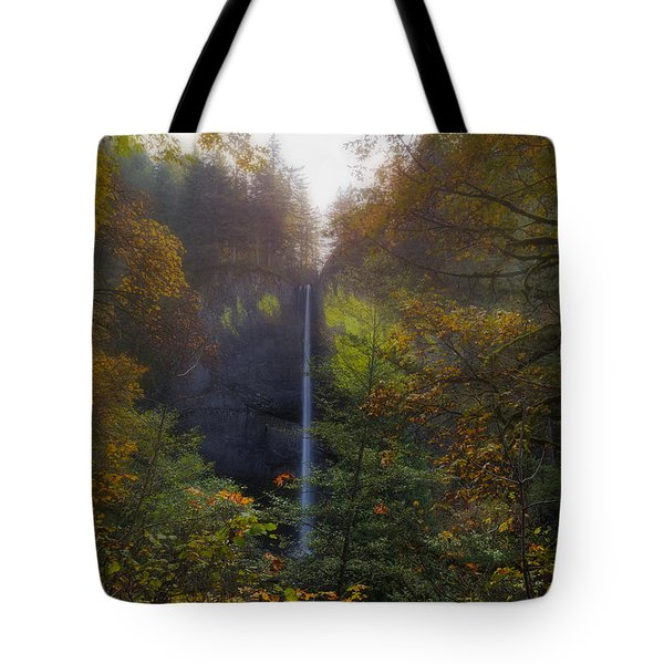 Latourell Falls In Autumn Tote Bag by David Gn