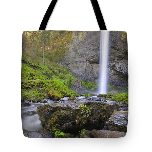 Latourell Falls Sunset Tote Bag by David Gn