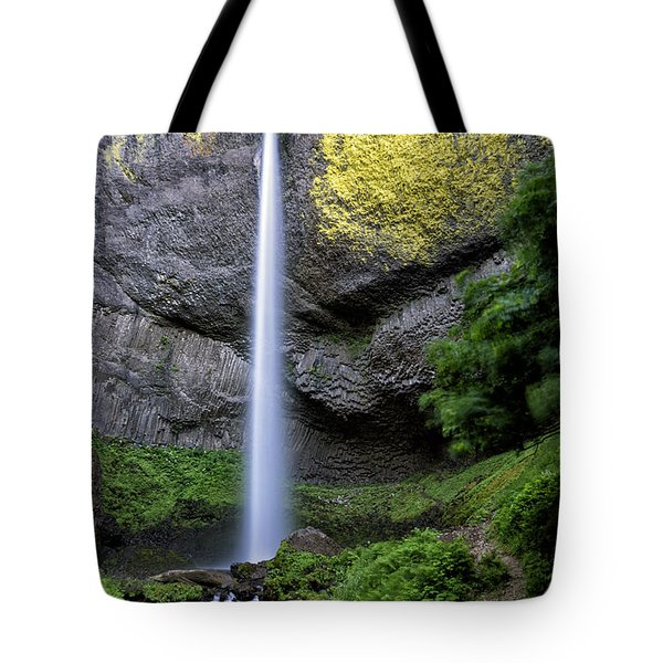 Latourell Water Fall Oregon Dsc05430 Tote Bag