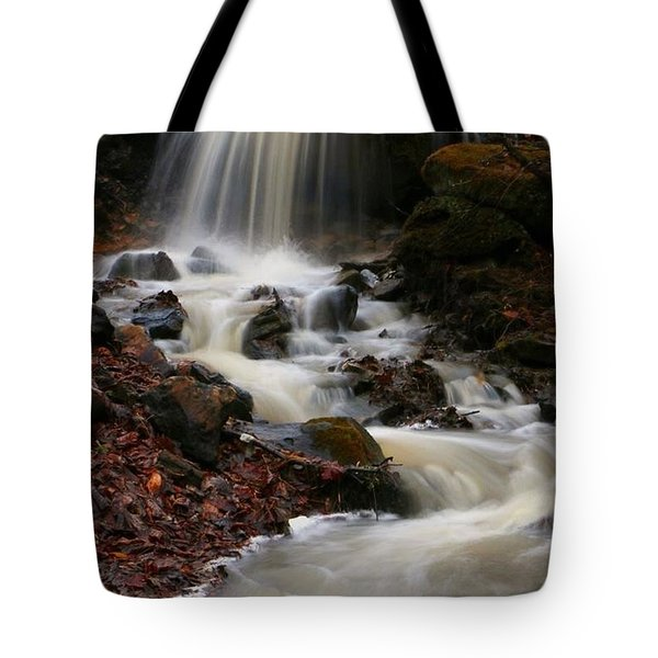 Latrobe Pa Tote Bag by Denise Moore