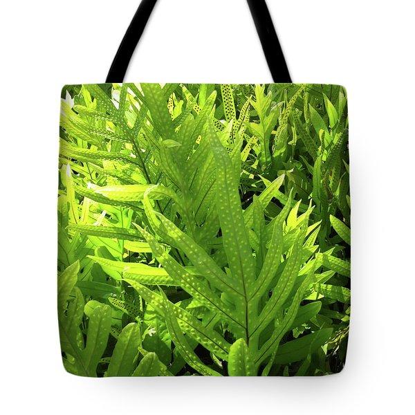 Lauae Fern Tote Bag
