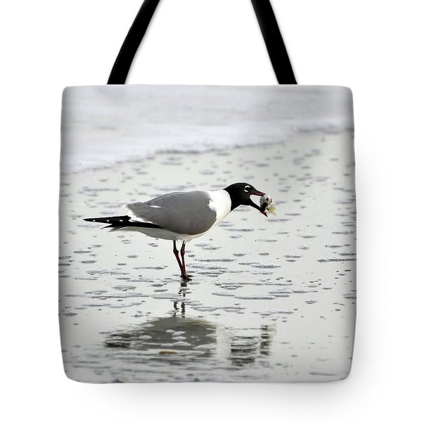 Laughing Gull Meal Tote Bag by Al Powell Photography USA