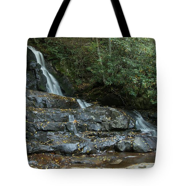 Laurel Falls 2 Tote Bag by Michael Peychich