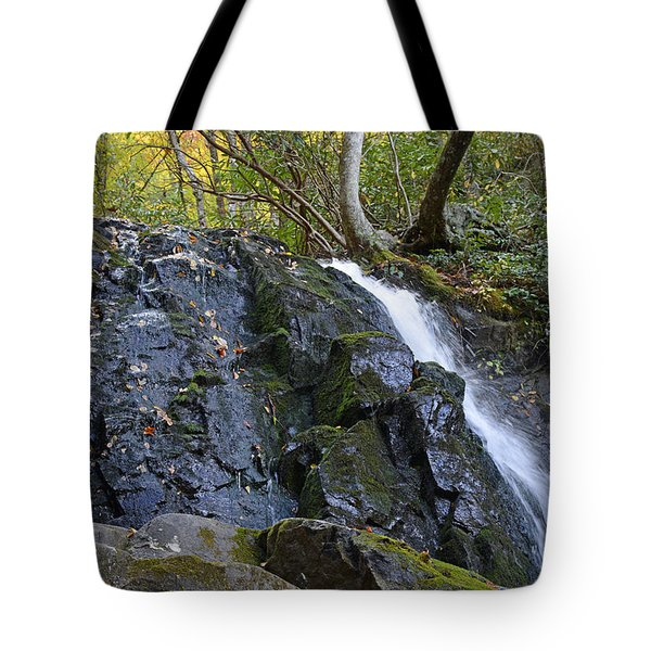 Laurel Falls Great Smoky Mountains National Park Tote Bag