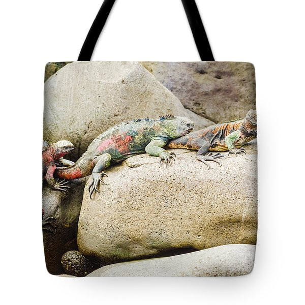 Lava Lizard On Galapagos Islands Tote Bag