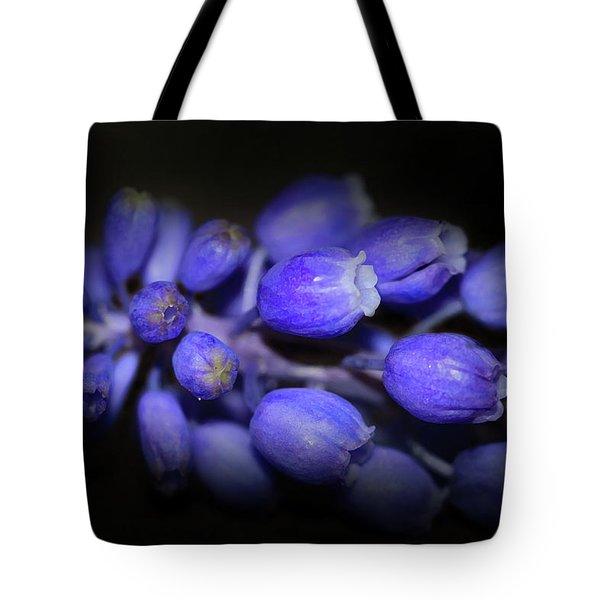 Lavendar Blue Tote Bag by Kim Henderson