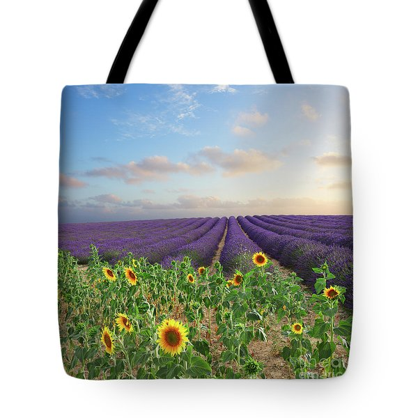 Lavender And Sunflower Flowers Field Tote Bag