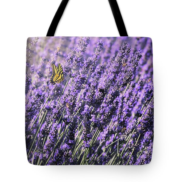 Lavender And Tiger Swallowtail In The Morning Light Tote Bag by Diane Schuster