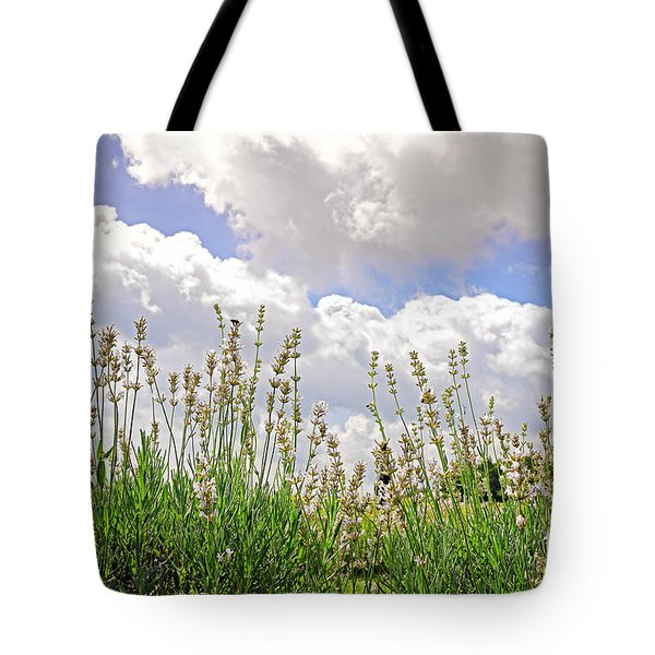 Lavender Augustifolia Alba Tote Bag by Charline Xia