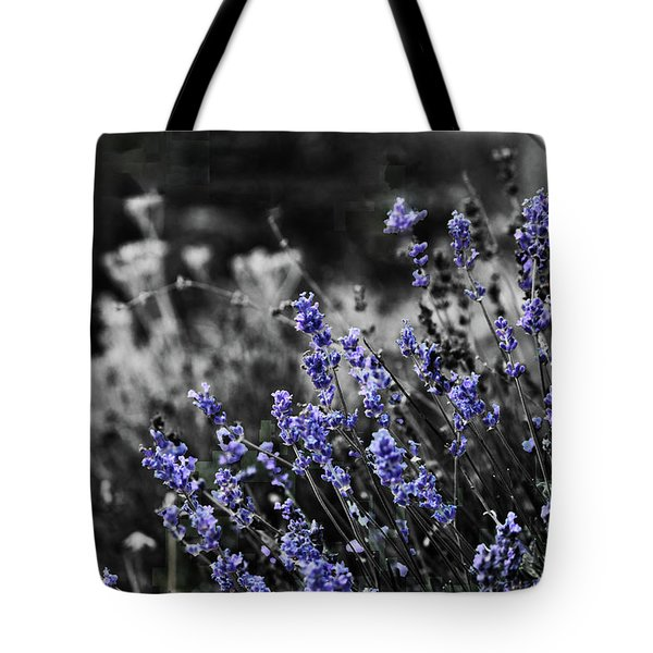 Lavender B And W Tote Bag