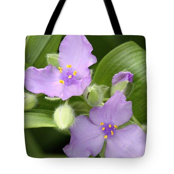 Lavender Blooms In Spring Tote Bag