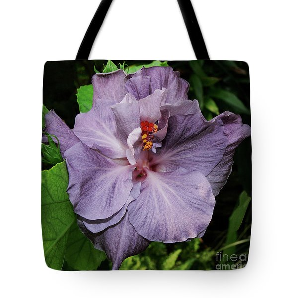 Lavender Tote Bag by Doug Norkum