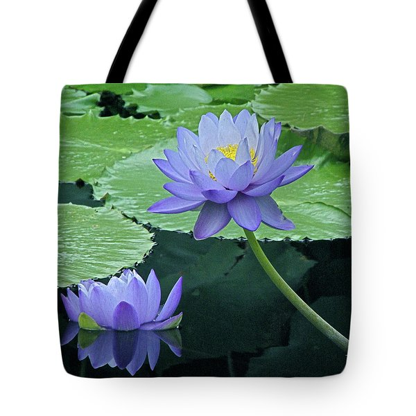 Tote Bag featuring the photograph Lavender Enchantment by Byron Varvarigos