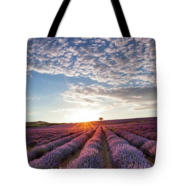 Lavender Tote Bag by Evgeni Dinev