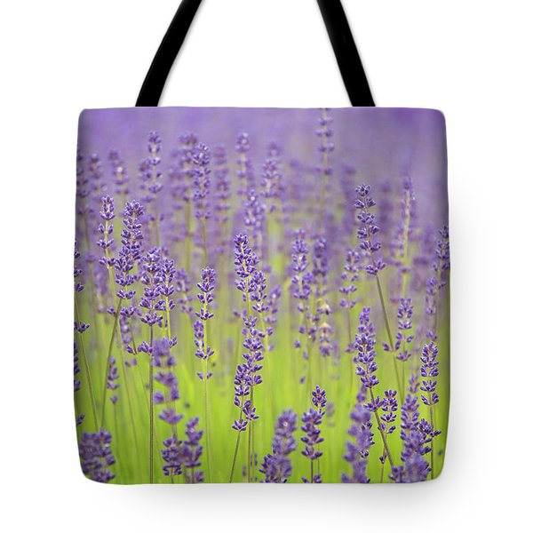 Tote Bag featuring the photograph Lavender Fantasy by Jani Freimann