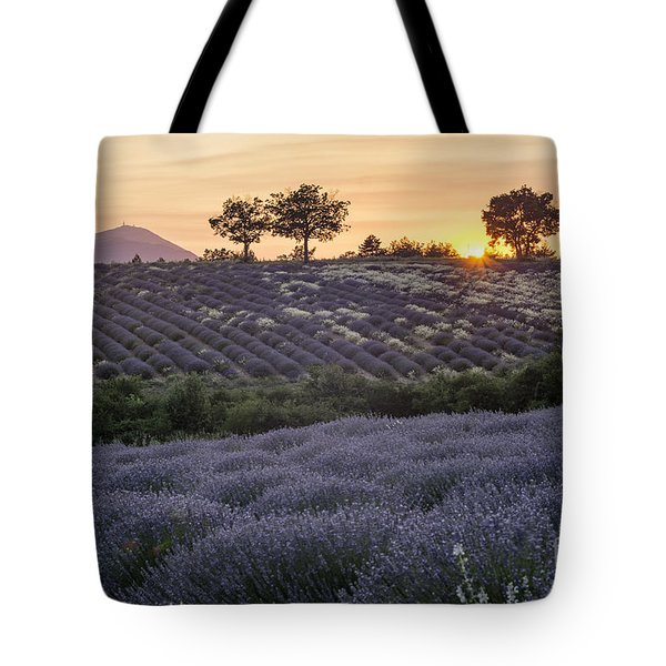 Tote Bag featuring the photograph Lavender Field Provence  by Juergen Held