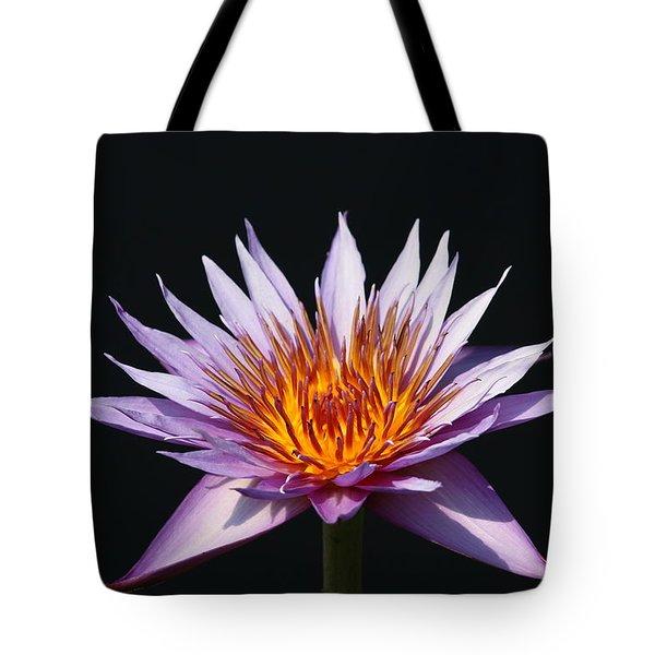Lavender Fire 1 Tote Bag