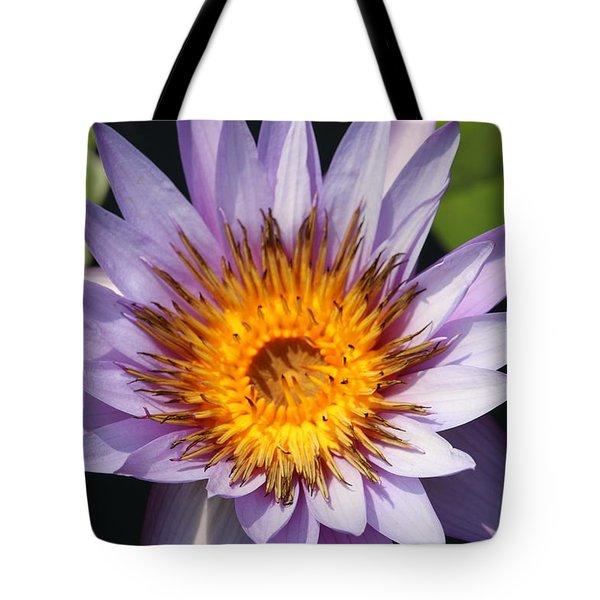 Lavender Fire Open Tote Bag