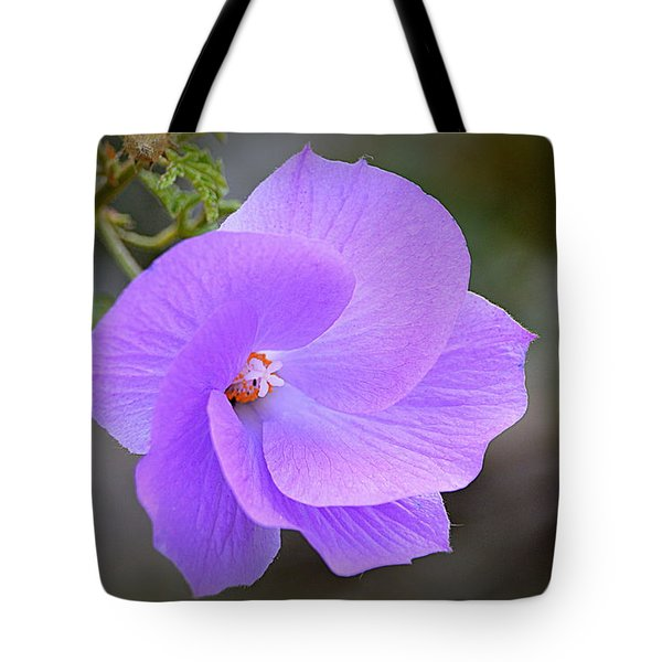 Tote Bag featuring the photograph Lavender Flower by AJ Schibig