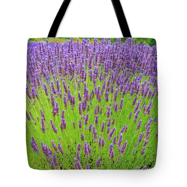 Lavender Gathering Tote Bag