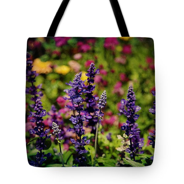 Lavender Tote Bag by Milena Ilieva