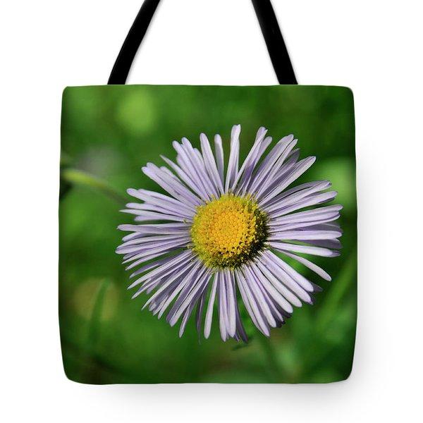 Lavender Serenity Tote Bag