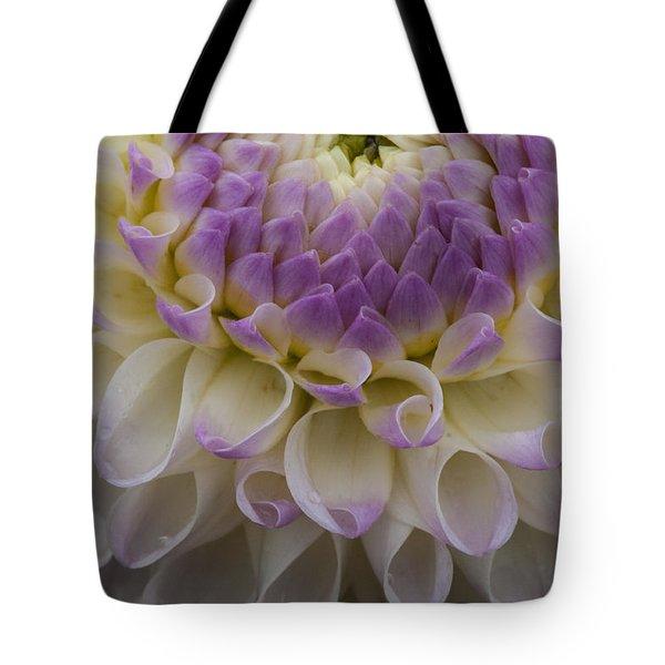 Lavender Shades Tote Bag