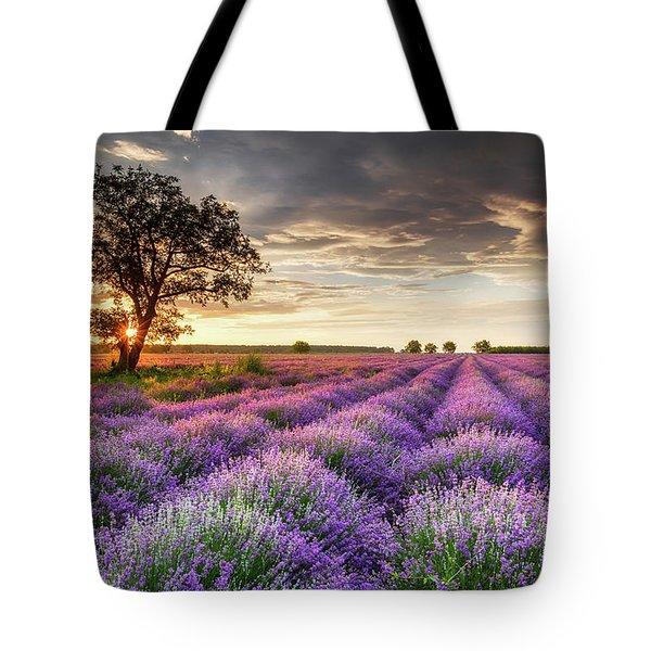 Lavender Sunrise Tote Bag