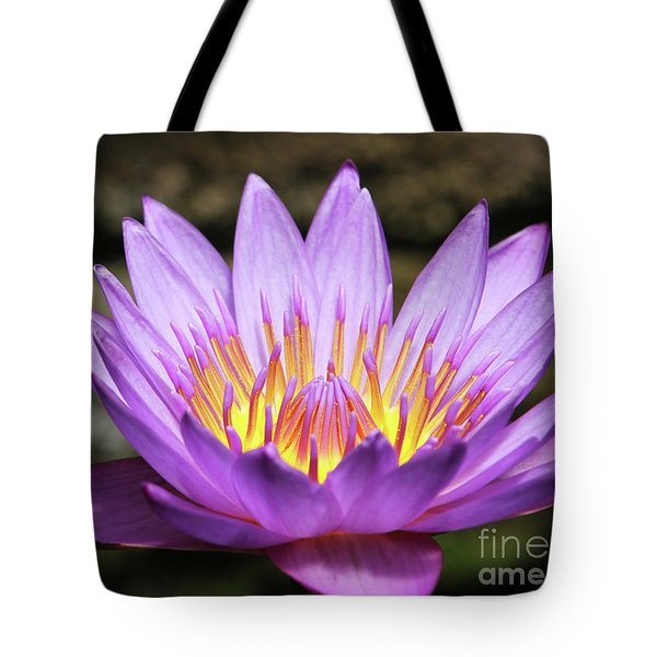 Lavender Water Lily #3 Tote Bag