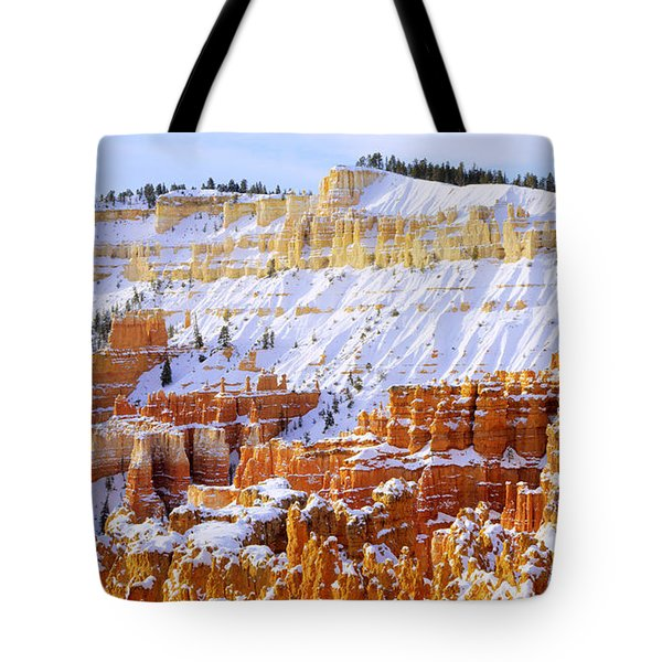 Tote Bag featuring the photograph Layers by Chad Dutson