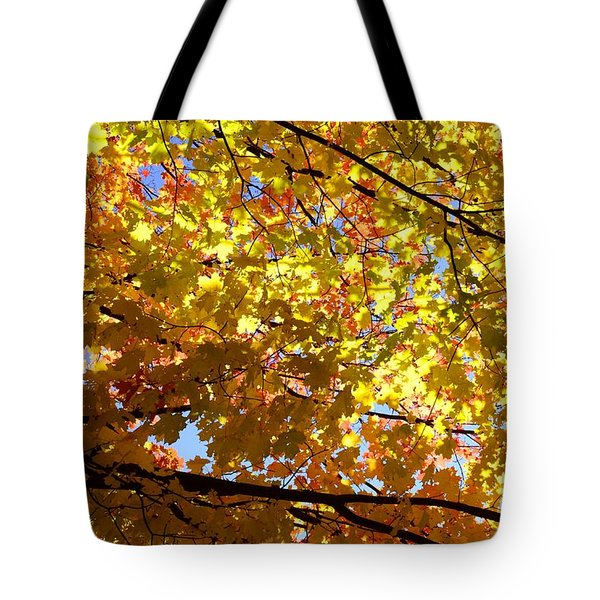 Tote Bag featuring the photograph Layers Of Autumn by Corinne Rhode