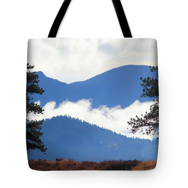 Tote Bag featuring the photograph Layers Of Nature by Shane Bechler