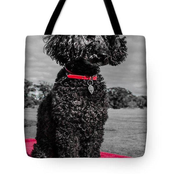 Layla Tote Bag by Martina Fagan